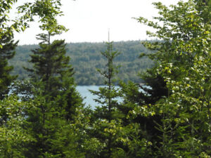Porters Lake lots for Sale