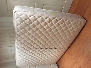 Queen mattress-$50 Kitchener / Waterloo Kitchener Area image 1