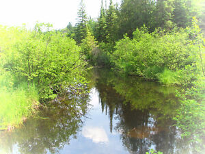 10 Acre Waterfront Lot by Creek - Close to Lake on Crown Land