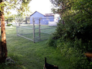 Large Outdoor Kennel