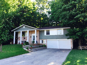 ELMIRA:  Outstanding open concept bungalow on large wooded lot