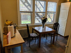 Large 1 bedroom in central Hamilton