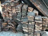 **Rosemary roof tiles 5p per tile!!**