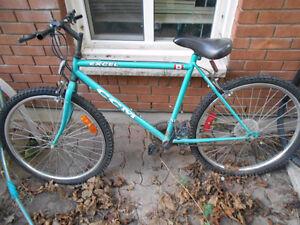 Classic CCM Excel Mountain Bike