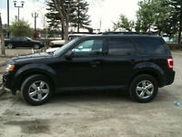 2009 Ford Escape XLT SUV.