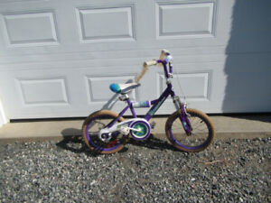 Girls 16 inch bike. Very good condition.