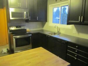 Brock Female Student - Clean Reno'd House - close to Pen Centre
