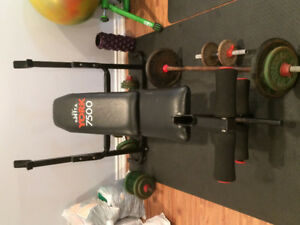 FREE WEIGHTS, BENCH, ANS BARS