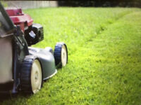 Lawn cutting and maintenance