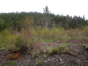 Approved 1.36 acre lot .Open to offers St. John's Newfoundland image 2