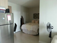 CORE DOWNTOWN jr1 br condo for rent 33 Lombard king subway