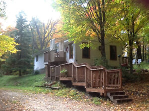 Country home in Irondale for private sale Kawartha Lakes Peterborough Area image 6