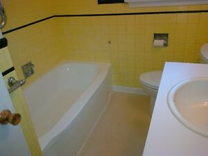 THE TUB GUY   BATHTUB REGLAZING $340.00 PLUS HST London Ontario image 5