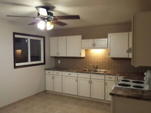 Large Bright 3-Bedroom Apartment Newly Renovated