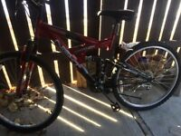 Mountain bike in great condition