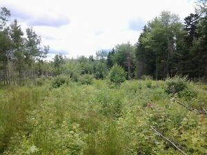 10 Acres in private country setting Salisbury Area