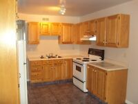 NICE, CLEAN, QUIET 2BR ADULT APT NEAR MONCTON HOSPITAL & U OF M