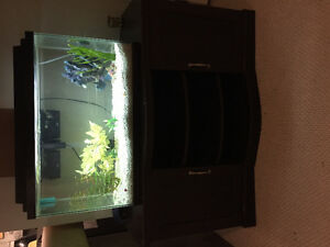 40 gallon aquarium with lid and light