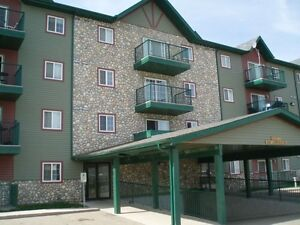 Fully Furnished 2BRM 2Bath RM Lougheed Condo available July1