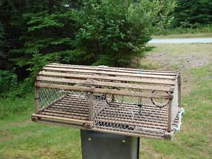 Used Lobster Traps for Sale