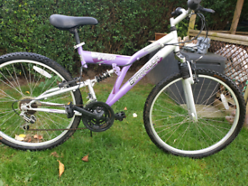 Full suspension mountain bike 21 speed gwo