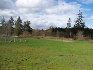 Horse Board in Rivers Edge, 3 acres.