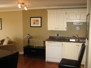 ONE BEDROOM + DEN FULLY FURNISHED CONDO FOR RENT St. John's Newfoundland image 3
