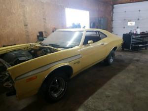Ford gran Torino sport ( survivor )