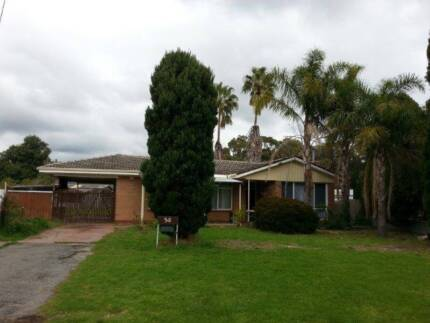 RENOVATED 3 BRM HOME ON LARGE FENCED BLOCK IN QUIET STREET Armadale Armadale Area Preview