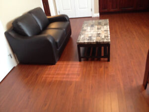 Furnished Bachelor unit w/sep entry,furnace& laundry for female