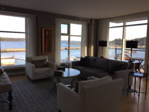 Professionally Decorated Executive Condo for Lease