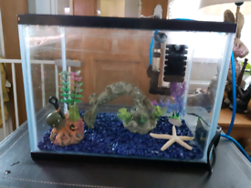 Small starter fish tank 12 litres