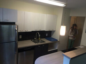 1 bedroom apt. Sublet. Quiet Place. Very clean