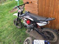 YX125 Stomp X Loncin 125cc Pit bike Dirtbike Off-road Crosser Quad Demon