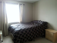 Kanata room for rent (full access to all areas)