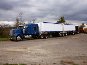 379 or W900 large car read ad