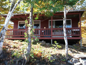 Rustic Cabin / Cottage on Bobs Lake available Starting Aug 25