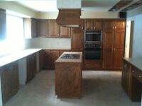 Kitchen Cabinets w/ Solid Wood Doors