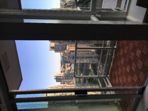 1 bedroom and 1 den fully furnished downtown
