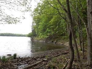 Waterfront - 18 Acres of Virgin Woodland on Gould Lake Kingston Kingston Area image 6