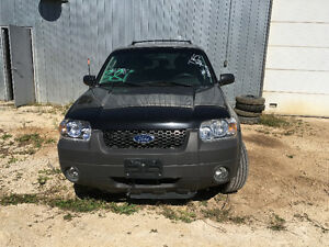 Ford Escape 2005 - Parting Out