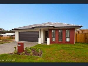 BRAND new home for rent $440 p week Coomera Gold Coast North Preview