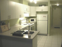 1 BED/1 BATH OPEN CONCEPT, WELL-DESIGNED DOWNTOWN CONDO