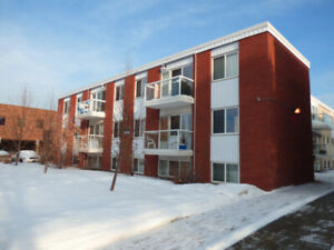 RENOVATED CENTRAL EDMONTON CONDO - GREAT INVESTMENT!