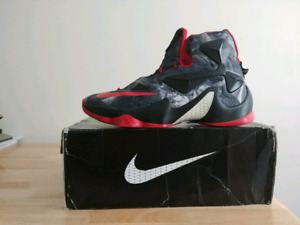 LeBron 13 (25k special edition)