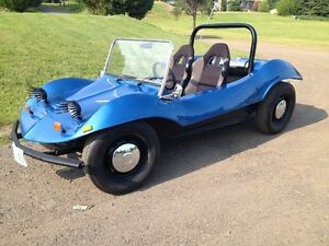 Fun Summer with a Dune Buggy