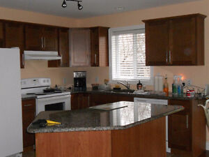 LOOKING FOR A PAINTER YOU CAN TRUST ? Windsor Region Ontario image 4