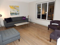 New EQ3 Sofa & Other Misc.New Furnishings used for Home Staging