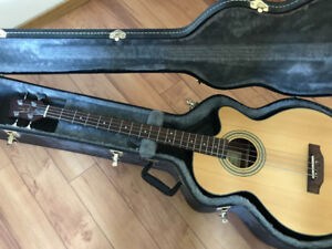 Acoustic Bass with Hard Case For Sale
