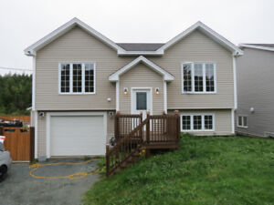NEW LISTING!! Beautiful 3 Bed Split Entry Home w/Garage in CBS!